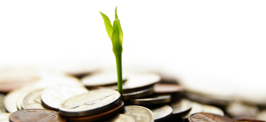 How a Compensation Plan Can Grow your Business